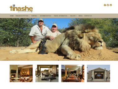 Tinashe<br><a href='http://www.tinashegroup.co.za' target='_blank'><small>www.tinashegroup.co.za</small></a>