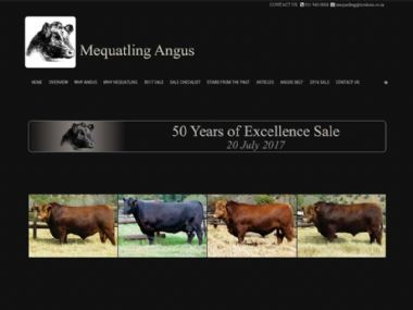 Mequatling Angus<br><a href='http://www.mequatling.co.za' target='_blank'><small>www.mequatling.co.za</small></a>